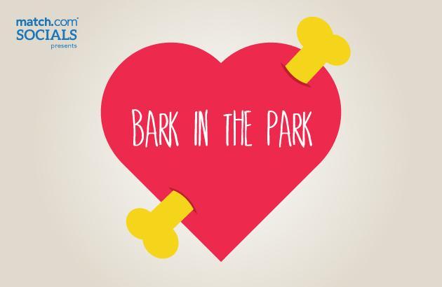 bark-in-the-park